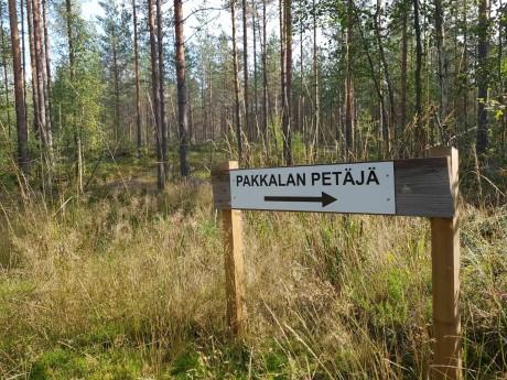 Täällä puutkin on viitoitettu